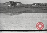 Image of Japanese farmers Japan, 1920, second 3 stock footage video 65675064490