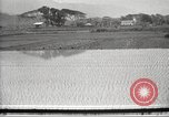 Image of Japanese farmers Japan, 1920, second 4 stock footage video 65675064490