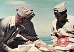 Image of Commander Woolson Peleliu Palau Islands, 1944, second 11 stock footage video 65675064590