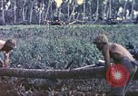 Image of United States Marines Guam Mariana Islands, 1944, second 10 stock footage video 65675064606