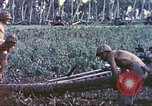 Image of United States Marines Guam Mariana Islands, 1944, second 11 stock footage video 65675064606