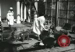 Image of monkey nursery Russia, 1956, second 4 stock footage video 65675064617