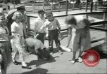 Image of Brookfield Zoo Chicago Illinois USA, 1956, second 8 stock footage video 65675064622