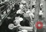 Image of teenage Rodeo competition Oregon United States USA, 1956, second 8 stock footage video 65675064624