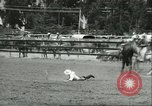 Image of 13th Annual Elk's Rodeo Santa Maria California USA, 1956, second 7 stock footage video 65675064629