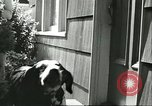 Image of American Humane Association Seattle Washington USA, 1956, second 7 stock footage video 65675064651