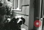 Image of American Humane Association Seattle Washington USA, 1956, second 8 stock footage video 65675064651