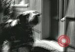 Image of American Humane Association Seattle Washington USA, 1956, second 10 stock footage video 65675064651