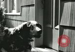 Image of American Humane Association Seattle Washington USA, 1956, second 11 stock footage video 65675064651