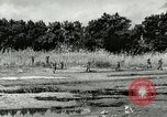 Image of European troops Egypt, 1956, second 6 stock footage video 65675064689
