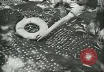 Image of Brazilian farmers Brazil, 1942, second 10 stock footage video 65675064715