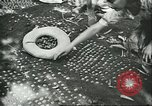 Image of Brazilian farmers Brazil, 1942, second 11 stock footage video 65675064715