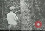 Image of Brazilian workers Brazil, 1942, second 1 stock footage video 65675064716