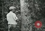 Image of Brazilian workers Brazil, 1942, second 2 stock footage video 65675064716