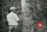 Image of Brazilian workers Brazil, 1942, second 3 stock footage video 65675064716