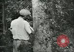 Image of Brazilian workers Brazil, 1942, second 5 stock footage video 65675064716