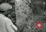 Image of Brazilian workers Brazil, 1942, second 11 stock footage video 65675064716