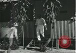 Image of Brazilian natives Brazil, 1932, second 6 stock footage video 65675064724