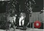 Image of Brazilian natives Brazil, 1932, second 7 stock footage video 65675064724