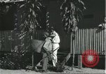 Image of Brazilian natives Brazil, 1932, second 12 stock footage video 65675064724