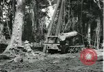 Image of rubber forests Brazil, 1932, second 9 stock footage video 65675064731