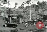 Image of lumber industry Brazil, 1932, second 6 stock footage video 65675064733