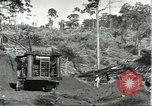 Image of lumber industry Brazil, 1932, second 8 stock footage video 65675064733