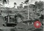 Image of lumber industry Brazil, 1932, second 9 stock footage video 65675064733