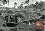 Image of lumber industry Brazil, 1932, second 10 stock footage video 65675064733