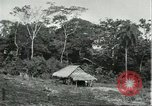 Image of Brazilian natives Brazil, 1932, second 2 stock footage video 65675064736