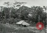 Image of Brazilian natives Brazil, 1932, second 4 stock footage video 65675064736