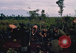 Image of 9th Infantry Division Cambodia, 1970, second 11 stock footage video 65675064744