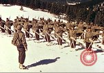Image of US Army mountain troops ski Colorado United States USA, 1943, second 2 stock footage video 65675064972