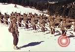 Image of US Army mountain troops ski Colorado United States USA, 1943, second 3 stock footage video 65675064972