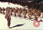 Image of US Army mountain troops ski Colorado United States USA, 1943, second 5 stock footage video 65675064972