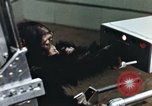 Image of training of chimpanzee New Mexico United States USA, 1960, second 5 stock footage video 65675065063