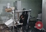 Image of training of chimpanzee New Mexico United States USA, 1960, second 8 stock footage video 65675065065