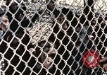 Image of training of chimpanzee New Mexico United States USA, 1960, second 9 stock footage video 65675065070