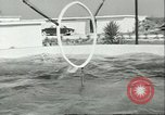 Image of porpoise Marineland Florida USA, 1951, second 6 stock footage video 65675065088