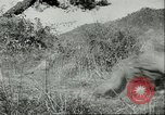Image of American troops Korea, 1951, second 10 stock footage video 65675065093