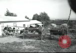 Image of agricultural school Palestine, 1945, second 2 stock footage video 65675065130
