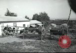 Image of agricultural school Palestine, 1945, second 3 stock footage video 65675065130