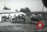 Image of agricultural school Palestine, 1945, second 4 stock footage video 65675065130