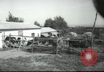 Image of agricultural school Palestine, 1945, second 5 stock footage video 65675065130