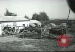 Image of agricultural school Palestine, 1945, second 7 stock footage video 65675065130
