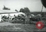 Image of agricultural school Palestine, 1945, second 9 stock footage video 65675065130