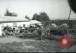 Image of agricultural school Palestine, 1945, second 10 stock footage video 65675065130