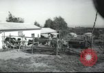 Image of agricultural school Palestine, 1945, second 11 stock footage video 65675065130