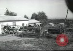 Image of agricultural school Palestine, 1945, second 12 stock footage video 65675065130