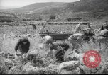 Image of Palestine civilians Palestine, 1945, second 2 stock footage video 65675065132